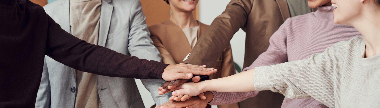 Teamentwicklung mit Flüchter & Partner